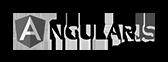 angular js sw